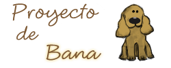 bana proyecto