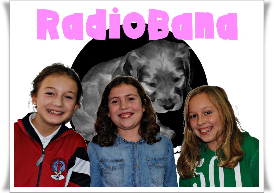 radiobanalogobyn