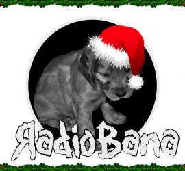 radiobanalogo1byn