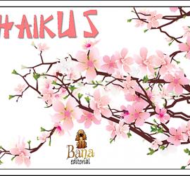 haikus 4-20140317-231143