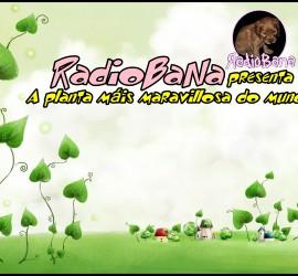 green-plant-cartoon-wallpaper-hd-images-free-1